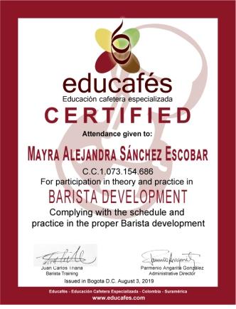 Diploma-inglés-web